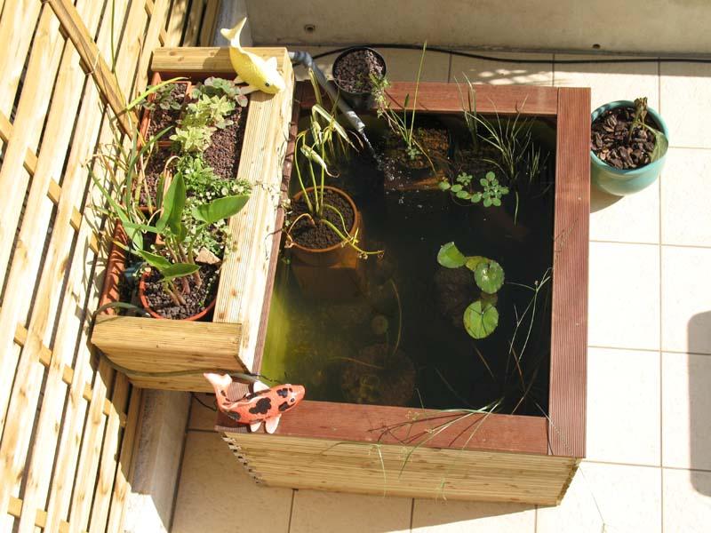 Nature bassin la mare et le bassin de jardin naturel afficher le sujet petit bassin hors - Petit bassin pour jardin ...